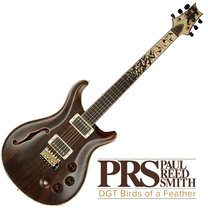 PRS DGT Birds of a Feather - Private Stock, out of production - c£10,000
