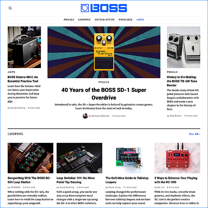 Articles.Boss.Info