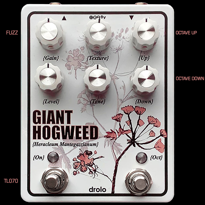 The Drolo Giant Hogweed is that rare Opamp Fuzz Beast that delivers Octave Fuzz in both directions